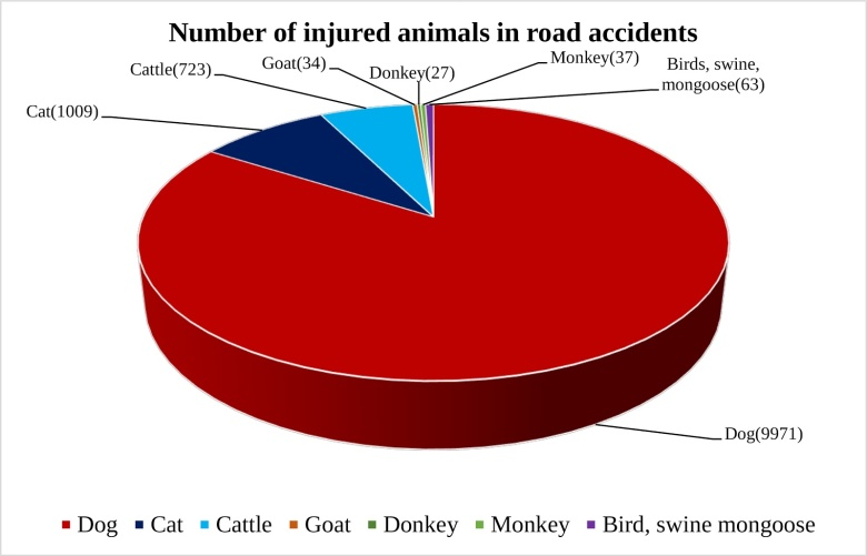number of injured animals in road accident